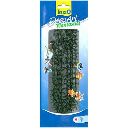 Растение DecoArt Higrophila - M (25 см)
