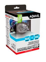 Ночное освещение для пресноводных и морских аквариумов Moonlight LED