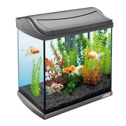 AquaArt Goldfish Discover Line - 30л