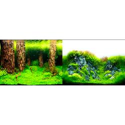Фон двухсторонний Затопленный лес / Камни с растениями, 60 см.