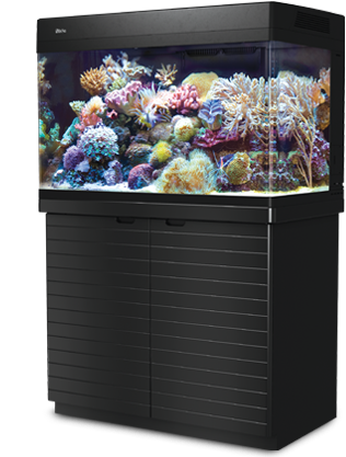 Аквариум MAX C-250 рифовая система - белый (аквариум и тумба)