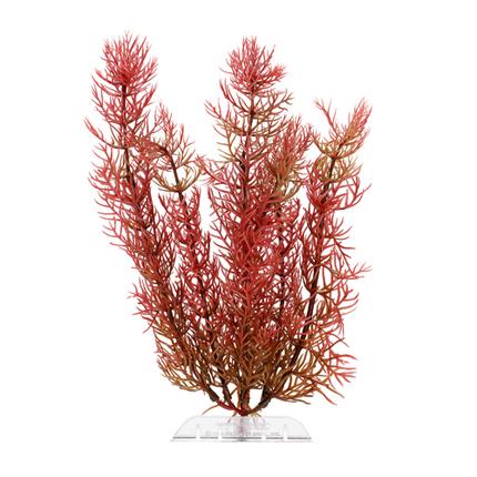 Растение DecoArt Red Foxtai - M (23 см)