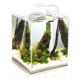 Аквариум с оборудованием Shrimp Set SMART (белый) 10л